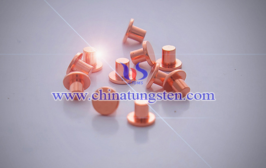 silver tungsten contact Picture